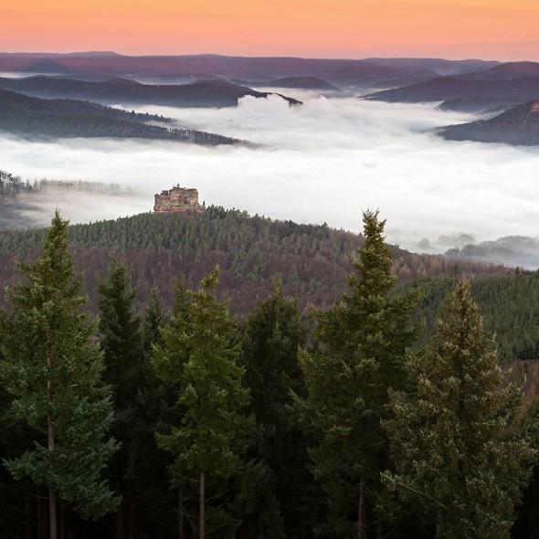 Pfälzerwald, Trifels, Workshop, Phototours4u, Raik Krotofil, Lindelbrunn, Naturpark, PFÄLZERWALD FOTOWORKSHOP